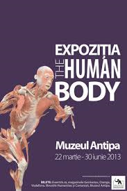 Banerul de la muzeul Antipa care promova expozitia The Human Body