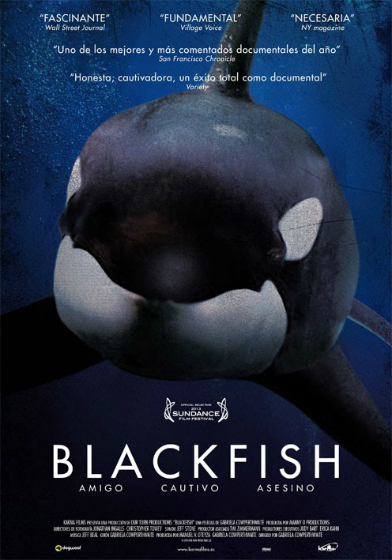 blackfish documentar